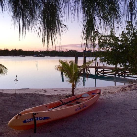 Driftwood Beach Kayak