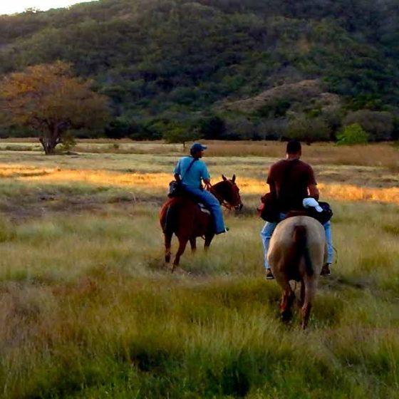 Cabo Velas Horseback Riding